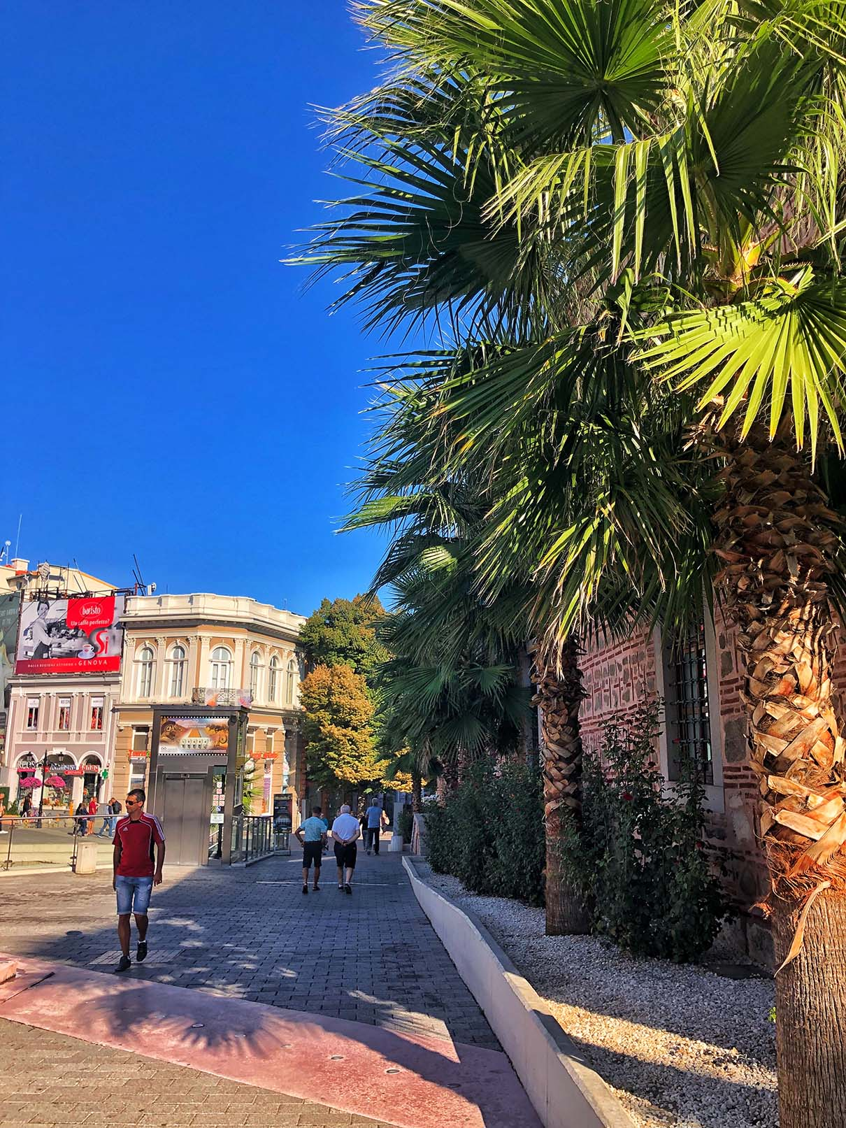 plovdiv city center palm square